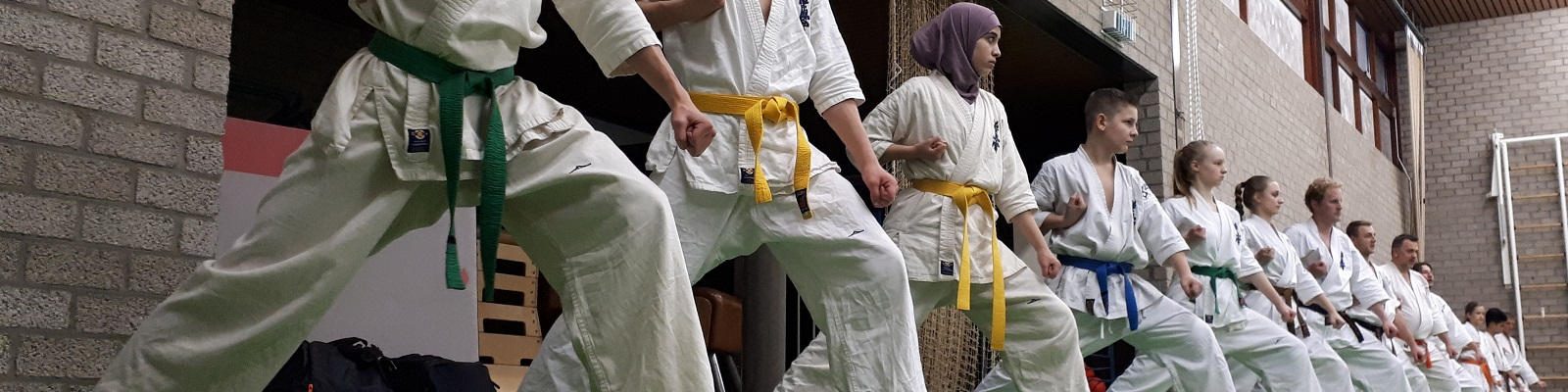 Interesse in kyokushin karate?